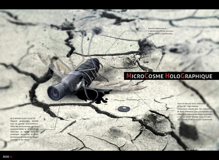 Microcosme Holographique